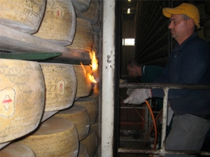 grana-padano-cheese-made-mantova-visiting-consorzo-grana-padano