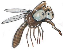 Festa-per-zanzare-Italia-Mosquito-festival-Italy-Berra-nel-Basso